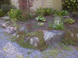 Garden beside house - Before